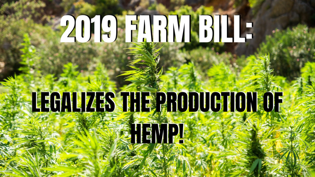 The 2019 Farm Bill Legalizes Production of Hemp